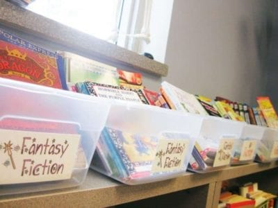 How to organize a classroom library