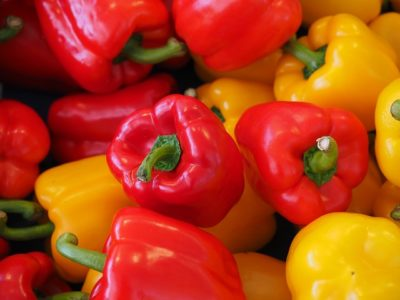 How to grow bell peppers indoors
